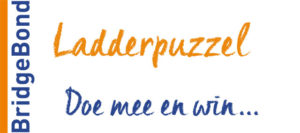 doe mee met de bridge ladderpuzzel